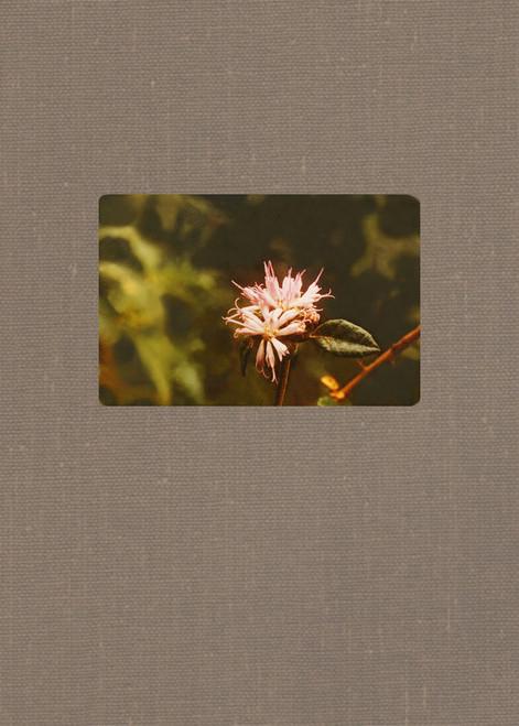 The Field Photographs of Alain H. Liogier: Plants of Hispaniola.