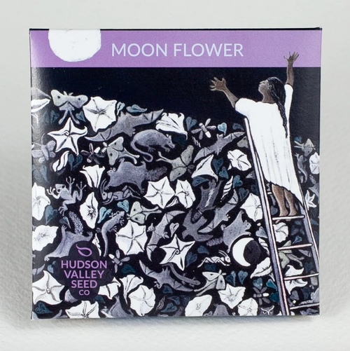Hudson Valley Seed Library - Moon Flower