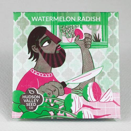 Hudson Valley Seed Library - Watermelon Radish