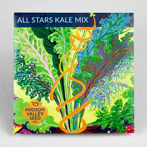 Hudson Valley Seed Library - All Stars Kale