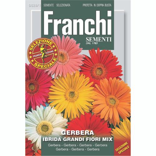 Franchi Seeds - Gerbera