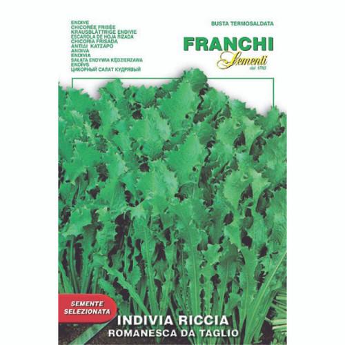 Franchi Seeds - Endive Riccia Romanesco