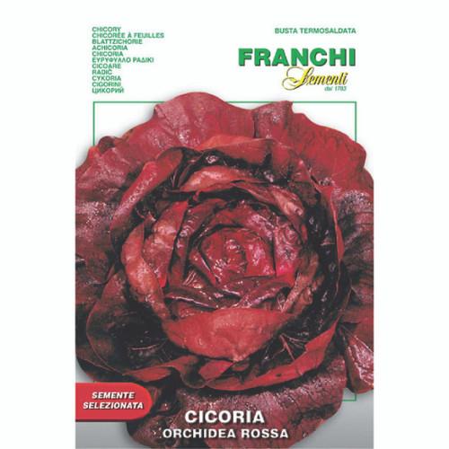 Franchi Seeds - Cicoria Orchidea Rossa