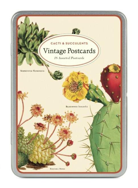 Cacti & Succulents Vintage Postcard Set Front