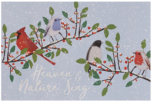 Winter Song Birds Card Boxset