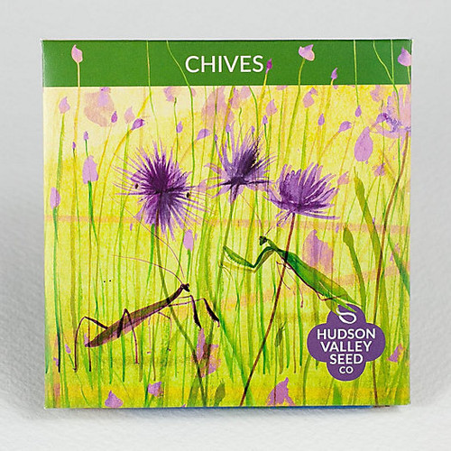 Hudson Valley Seed Library - Chives