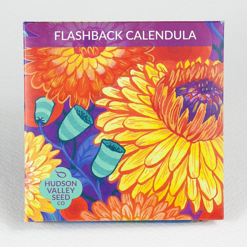Hudson Valley Seed Library - Flashback Calendula Mix