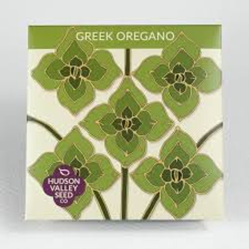 Hudson Valley Seed Library - Greek Oregano