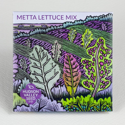 Hudson Valley Seed Library - Metta Lettuce Mix