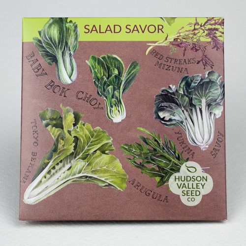 Hudson Valley Seed Library -  Salad Savor Mix