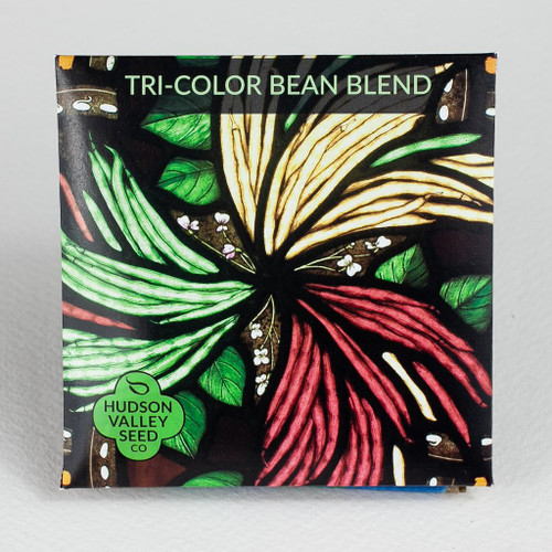 Hudson Valley Seed Library - Tri-Color Bean Blend