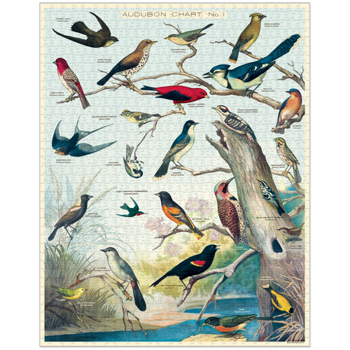 Cavallini & Co - Audubon Birds Puzzle