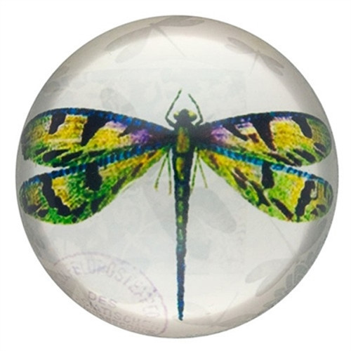 Green Dragonfly Paperweight