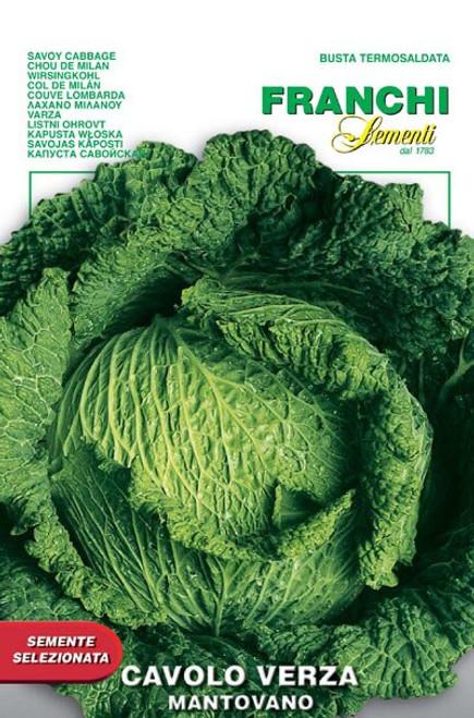 Franchi Seeds - Cabbage Verza Mantovano