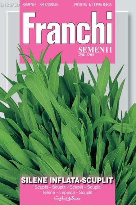 Franchi Seeds - Sclupit/Silene Inflata