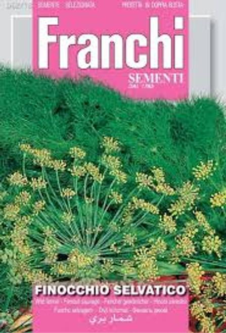 Franchi Seeds - Wild Fennel (Flowering) / Finocchio Selvatico
