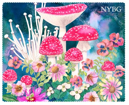 NYBG Mushroom Lens Cloth