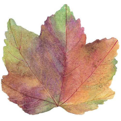 Autumn Leaf Placemat