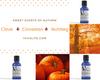 Autumn Essential Oil Trio