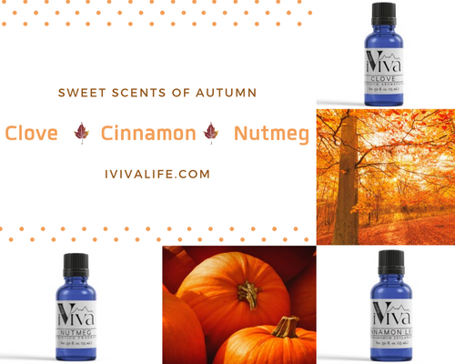 Autumn Essential Oil Trio