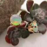 Opal Stud Earrings in 14k Gold