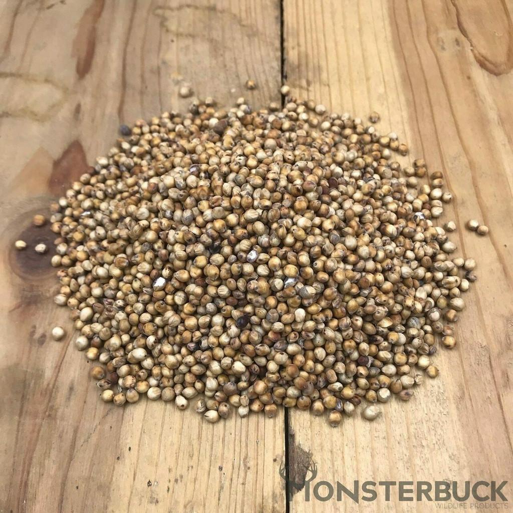 Grain Sorghum Seed (A.K.A Red Milo)