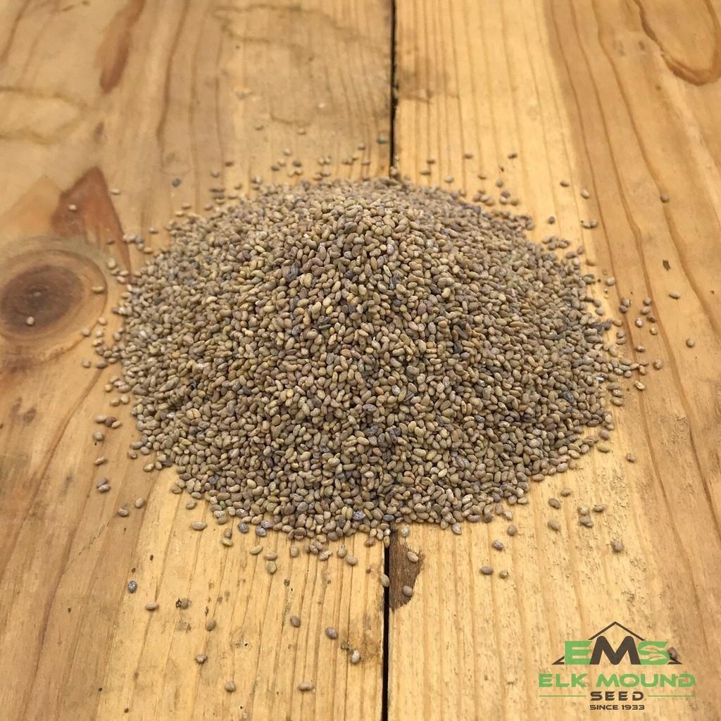 Econo-Alfalfa