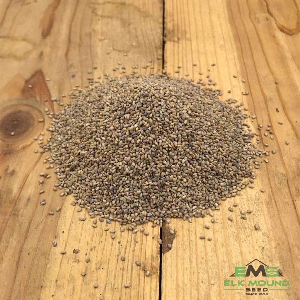EMS Creeping Root Alfalfa