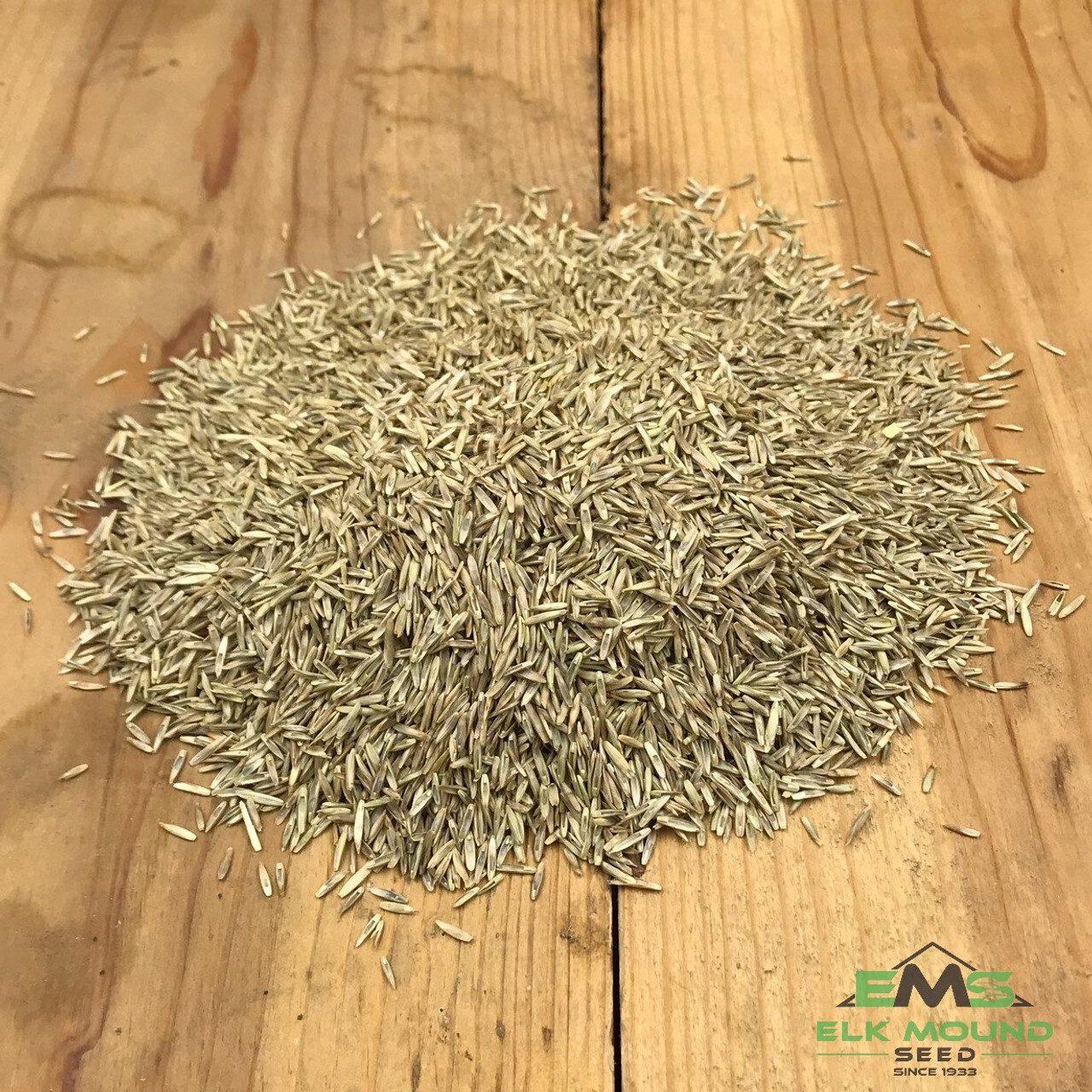 Organic Perennial Ryegrass