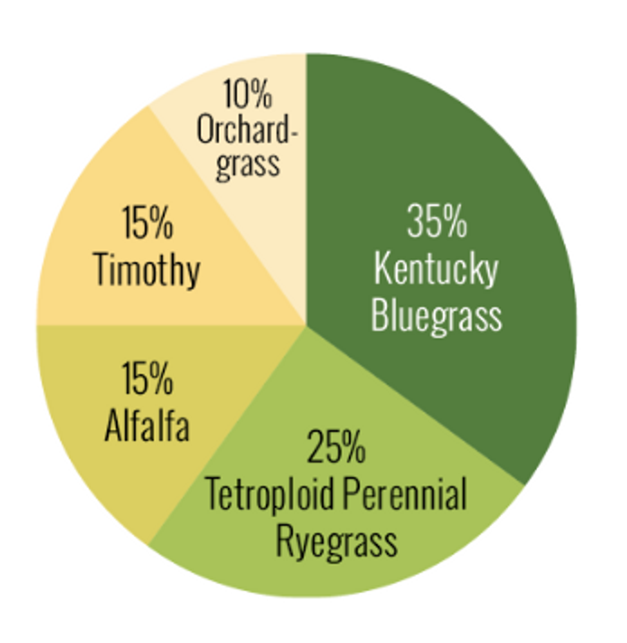 Breakdown of the types of grass seeds in the Horse Pasture Mix
