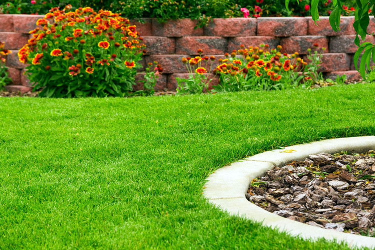 Prepare Your Lawn & Garden Starting in January
