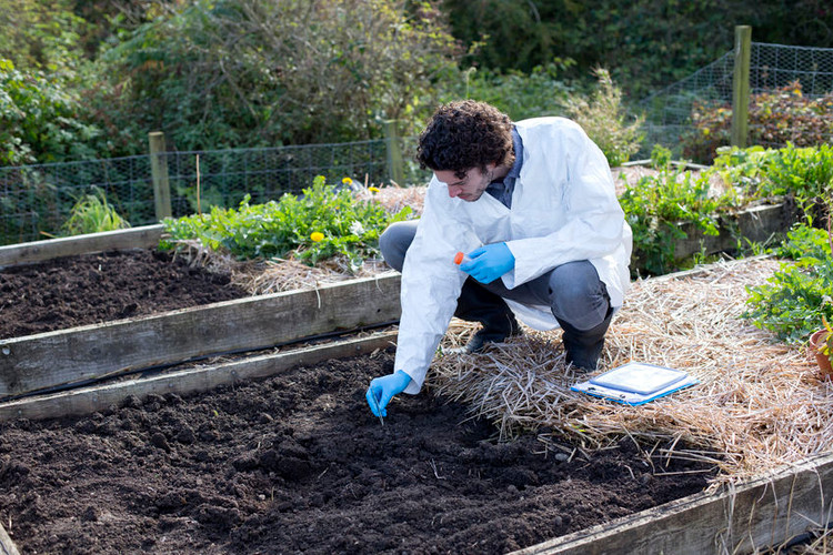 Soil Testing Essentials: What You Need to Know