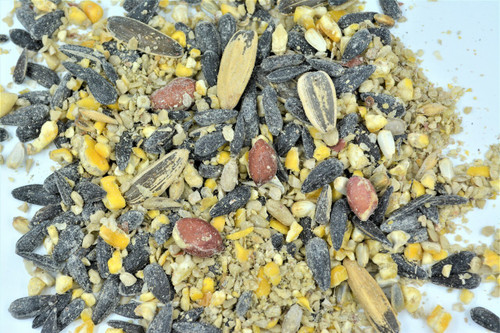 No-Millet Bird Seed Mix