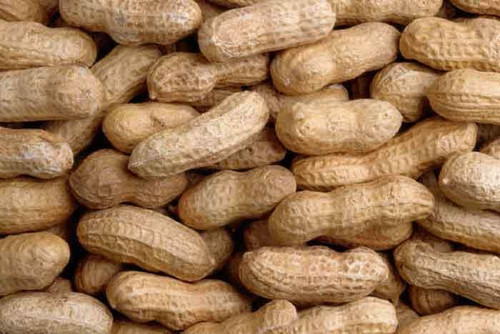 Wildlife (In-Shell) Peanuts
