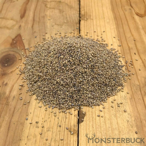 Alfalfa Food Plot Seed