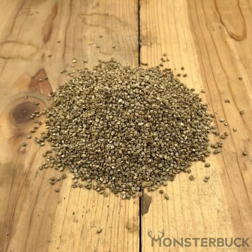 Japanese Millet Food Plot Seed