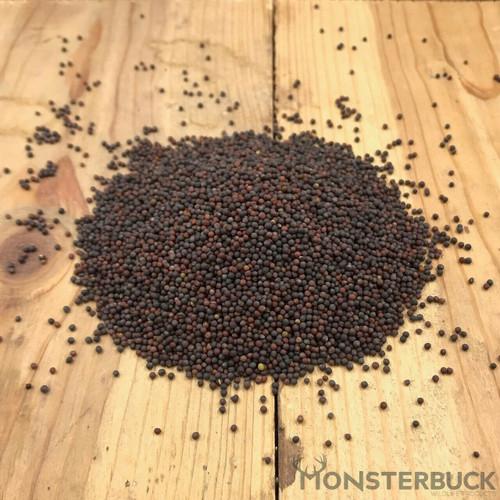 Kale Food Plot Seed