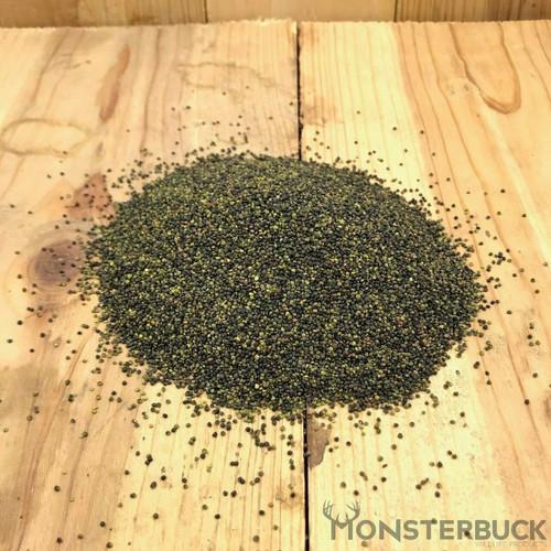 Alsike Clover Food Plot Seed