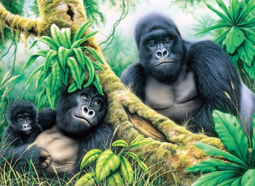 Paint by Numbers Mountain Gorillas