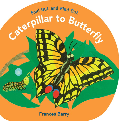 Caterpillar To Butterfly Hardcover
