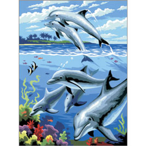 PBN Dolphins