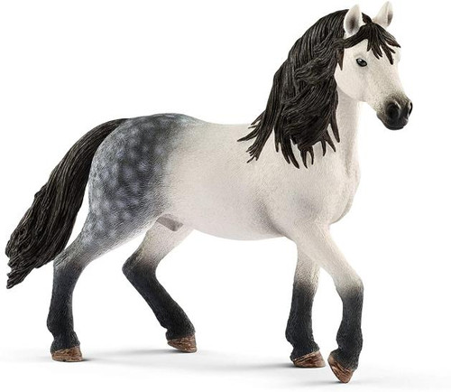 Horse Club - Andalusian Stallion
