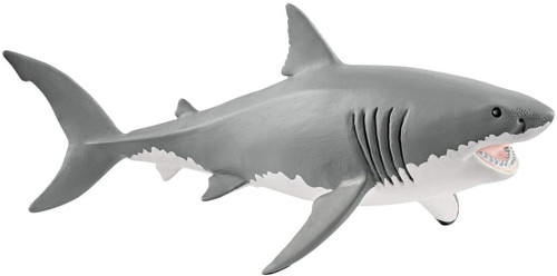 Wildlife - Great White Shark