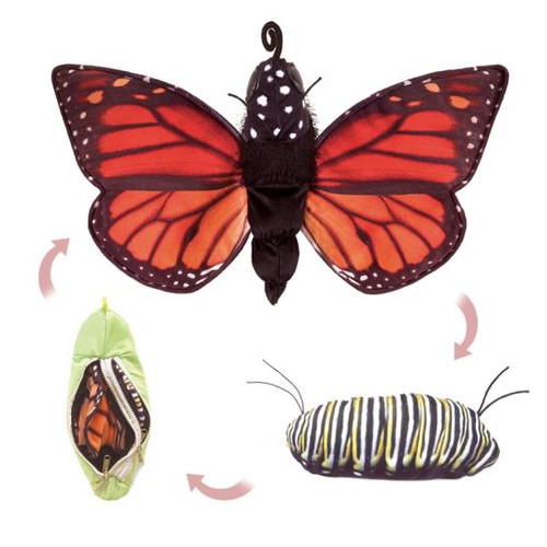 Monarch Life Cycle Puppet