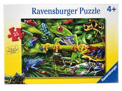 Amazing Amphibians 35 pc
