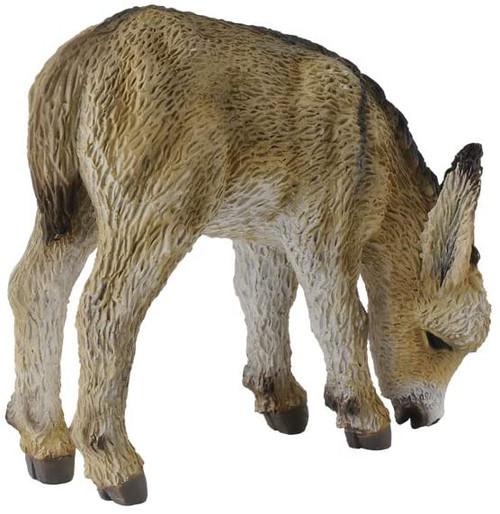 Donkey Foal Grazing