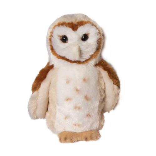Rafter Barn Owl