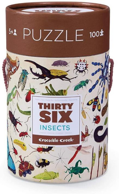 Insects 100 piece