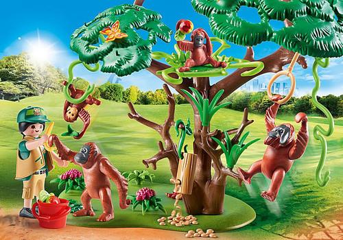 Orangutans With Tree