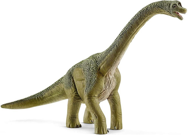 Dinosaurs - Brachiosaurus